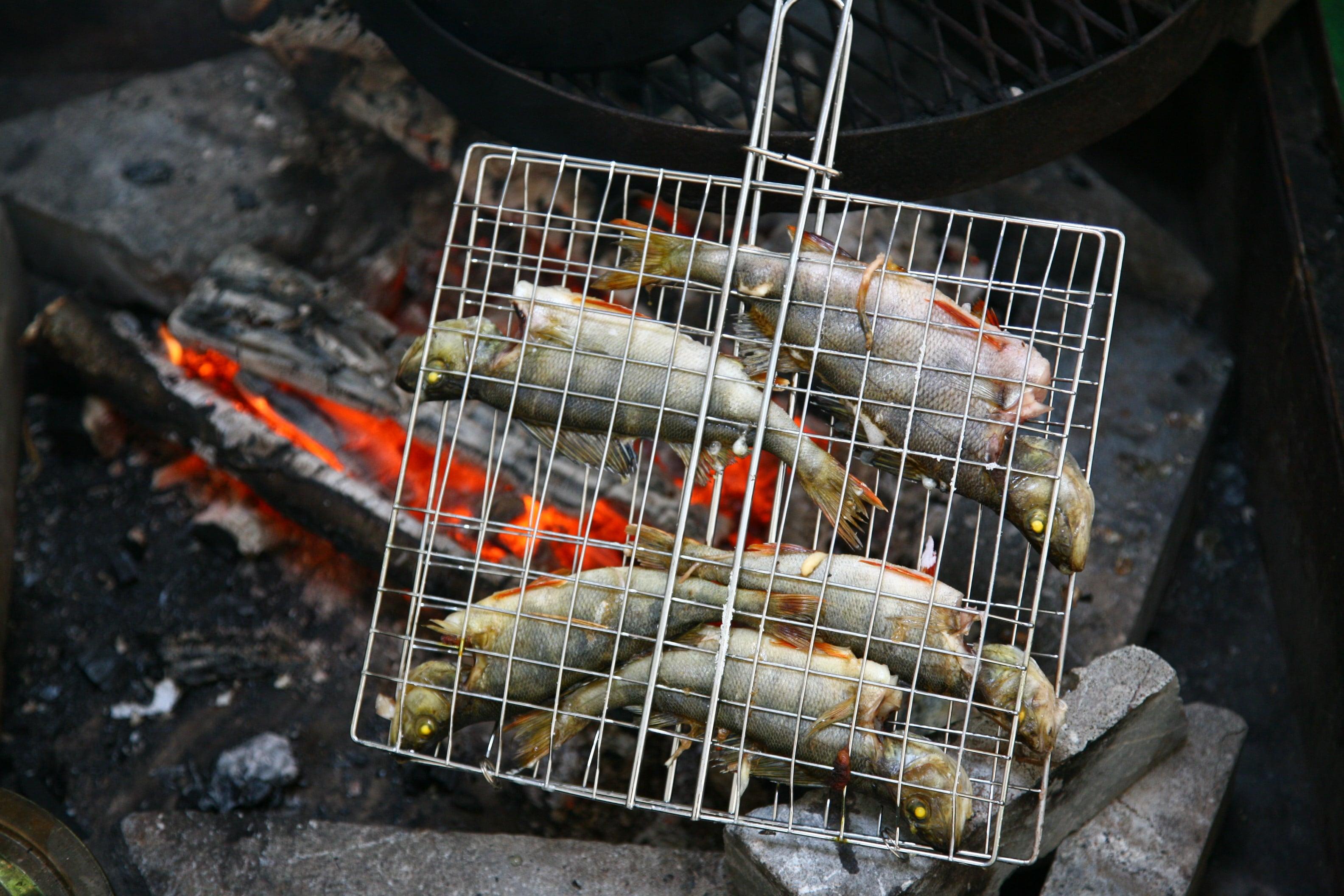 voyage-finlande-fireplaces