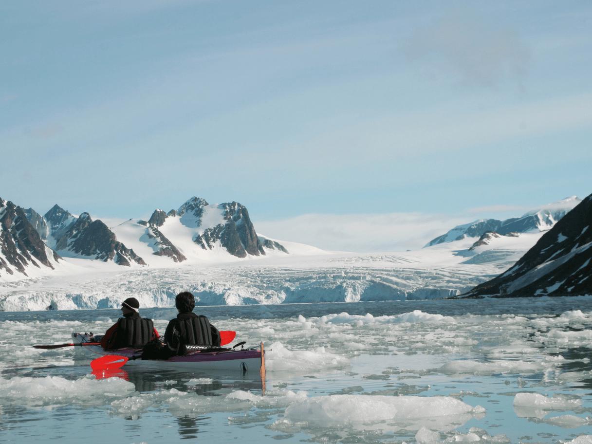 Kayak au milieu des icebergs
