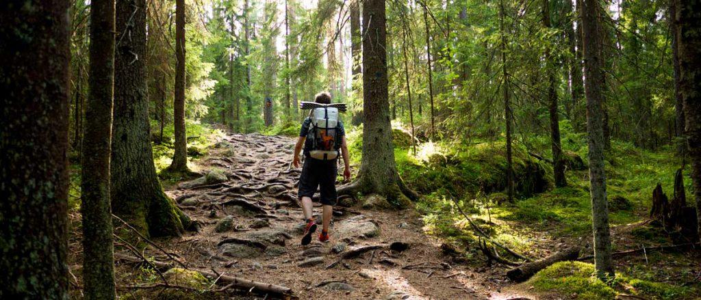 Randon dans les bois en Finlande