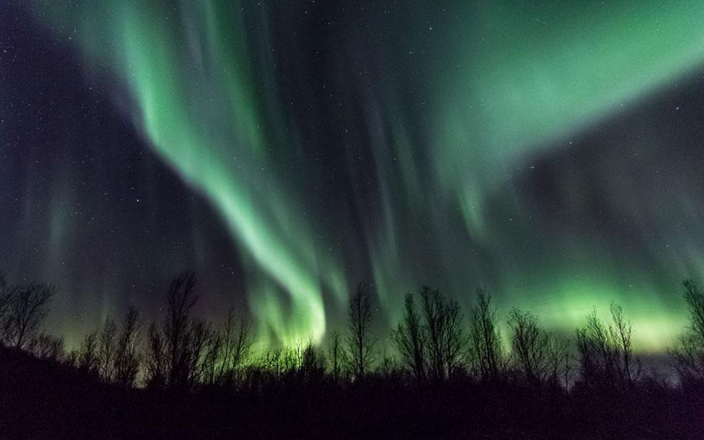 Aurores polaires. Crédit photo : Rémi Basmaji, guide 66°Nord
