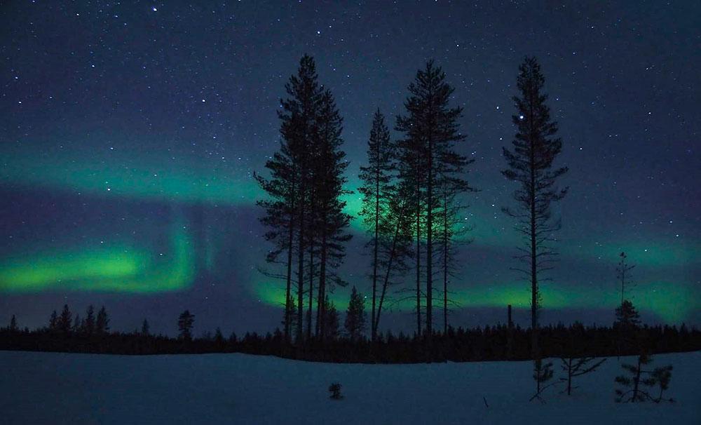 Aurores boréales en laponie finlandaise. crédit : Charlez Ariza, guide 66°Nord