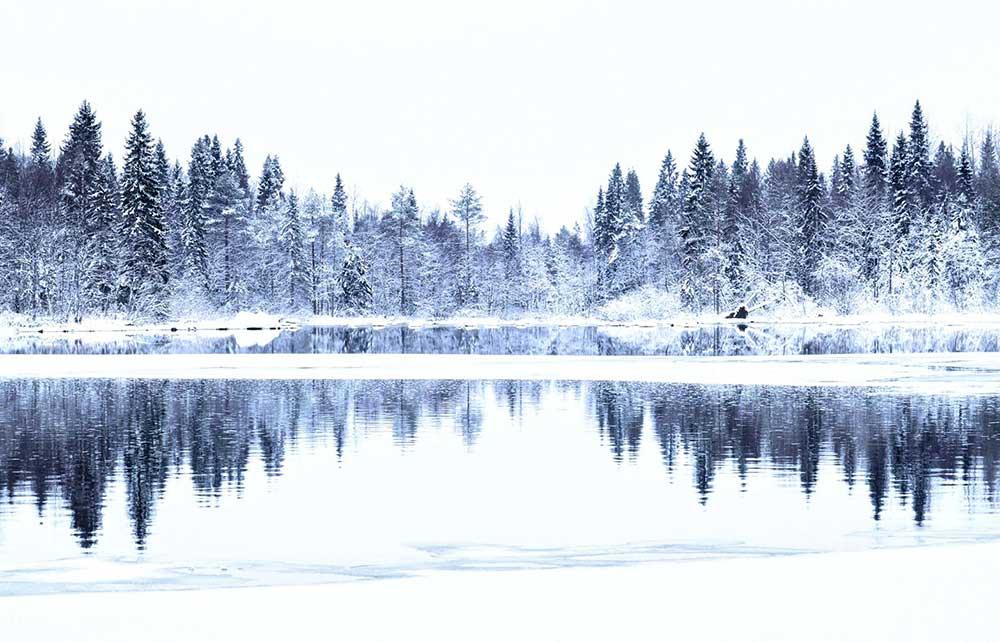 Laponie finlandaise en hiver. Crédit Charles Ariza, guide 66°Nord